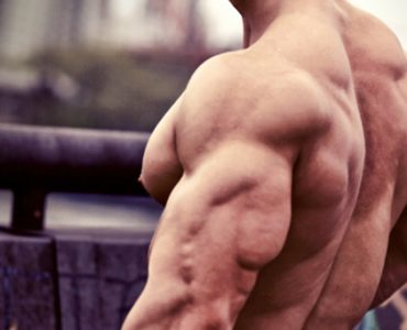 triceps-dessines